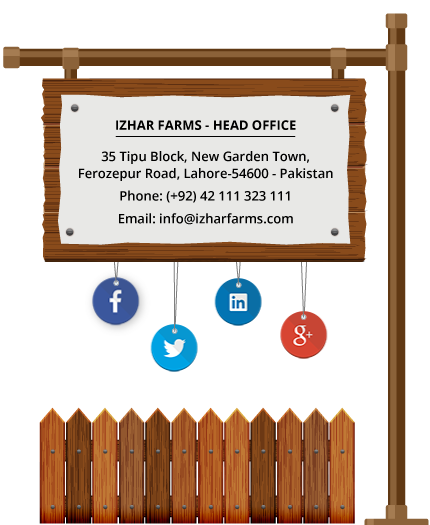 Contact Izhar Farms
